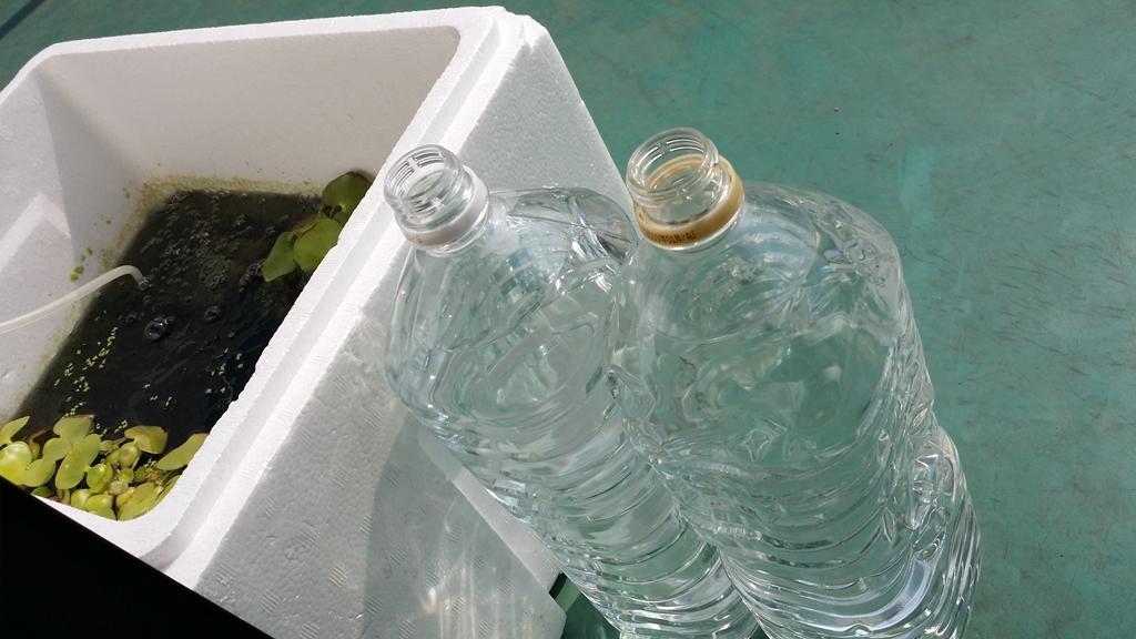 20180226 ミナミヌマエビ飼育水の換水用の水