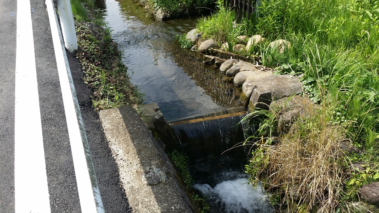 鶴見川源流の泉6